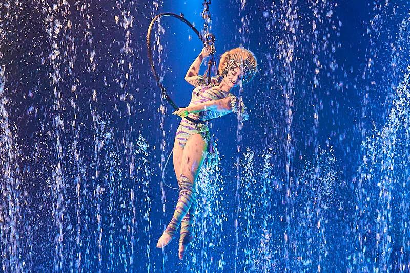 fotos del circo alegría en salamanca